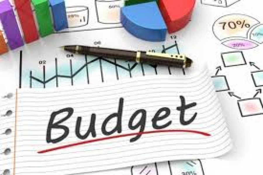 A budget in the time of Covid-19 pandemic