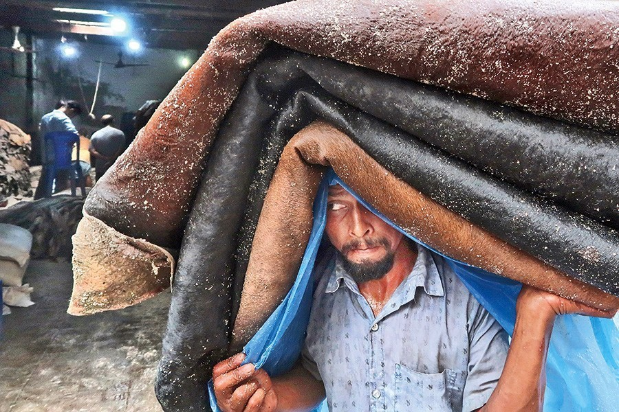 A worker carrying a headload of salted rawhide for a wholesaler at Posta in Dhaka city — FE/Files