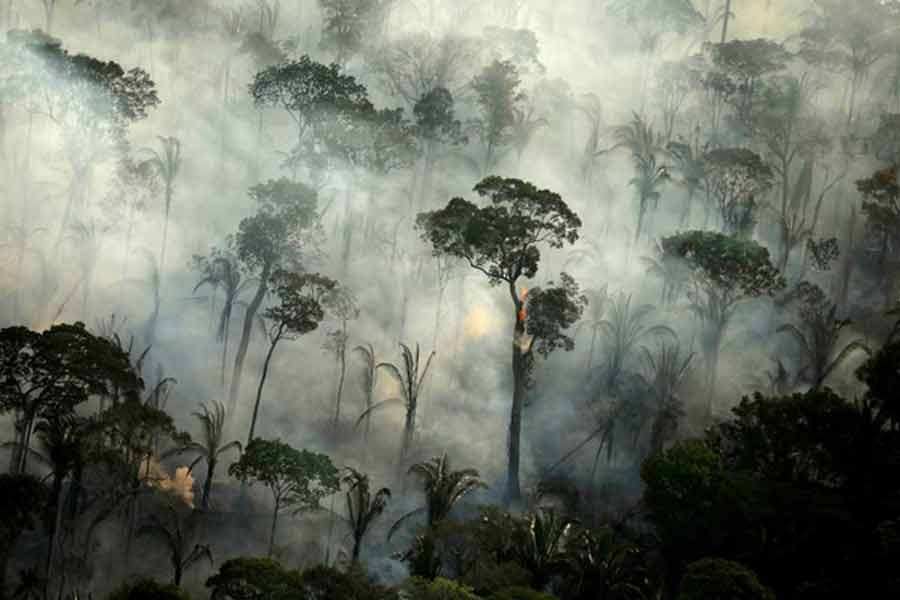 Brazil bans fires in Amazon rainforest for 120 days