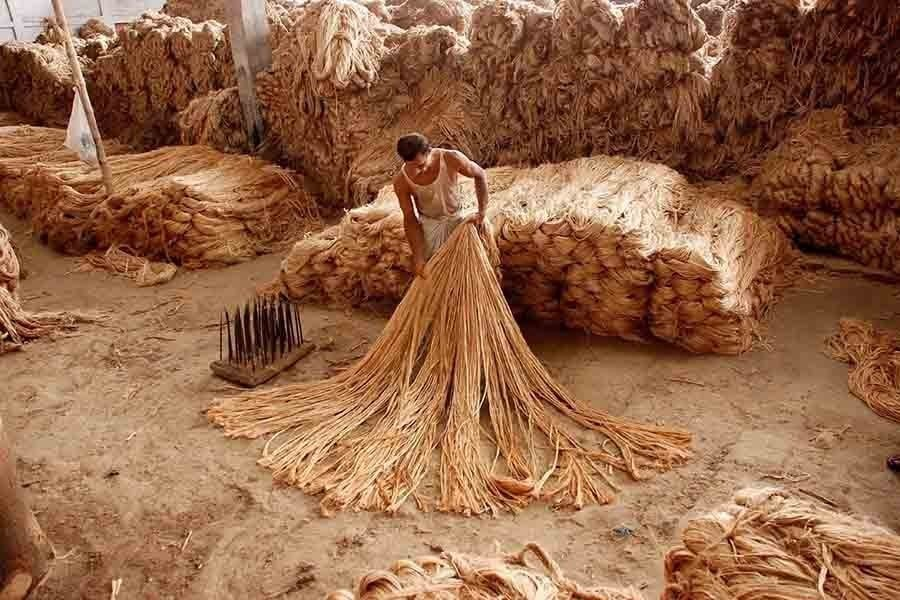 Exporters demand not to impose ban, duty on raw jute