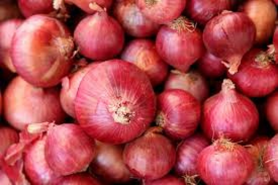 The power of onion