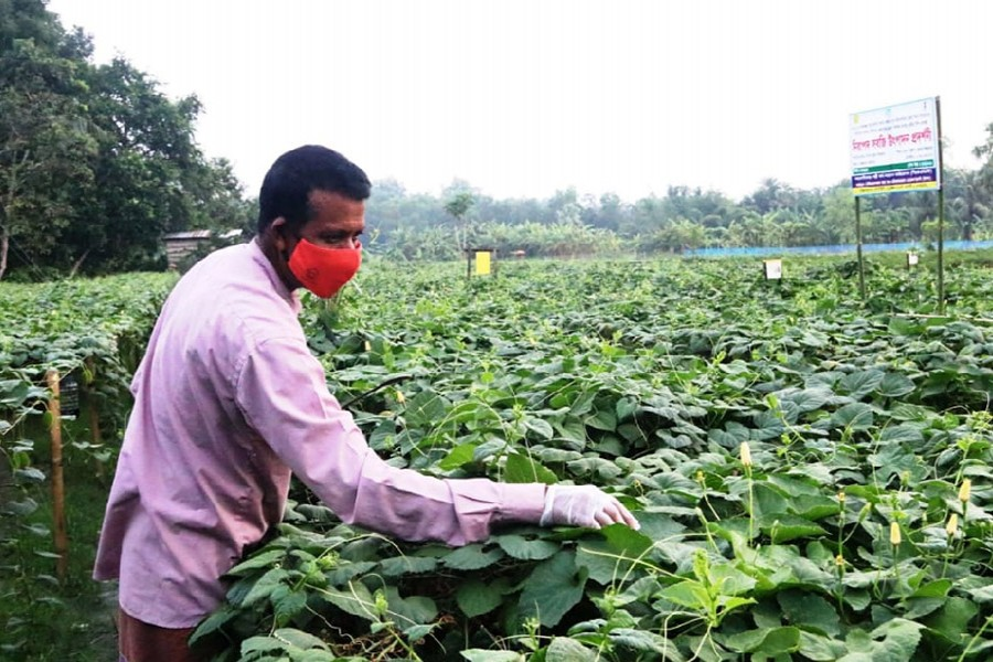 IFAD to provide $18m to rebuild microenterprises, support smallholders  in Bangladesh