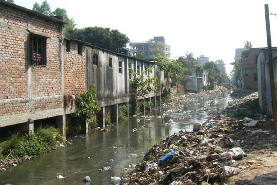 DCCs tasked to restore dying canals