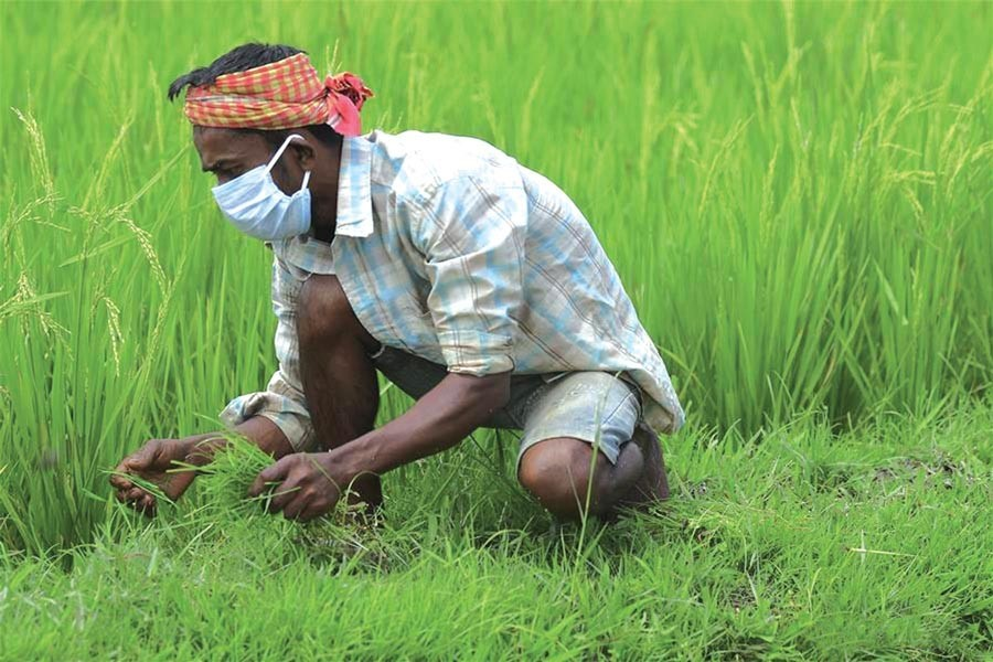 Welcome changes in agriculture