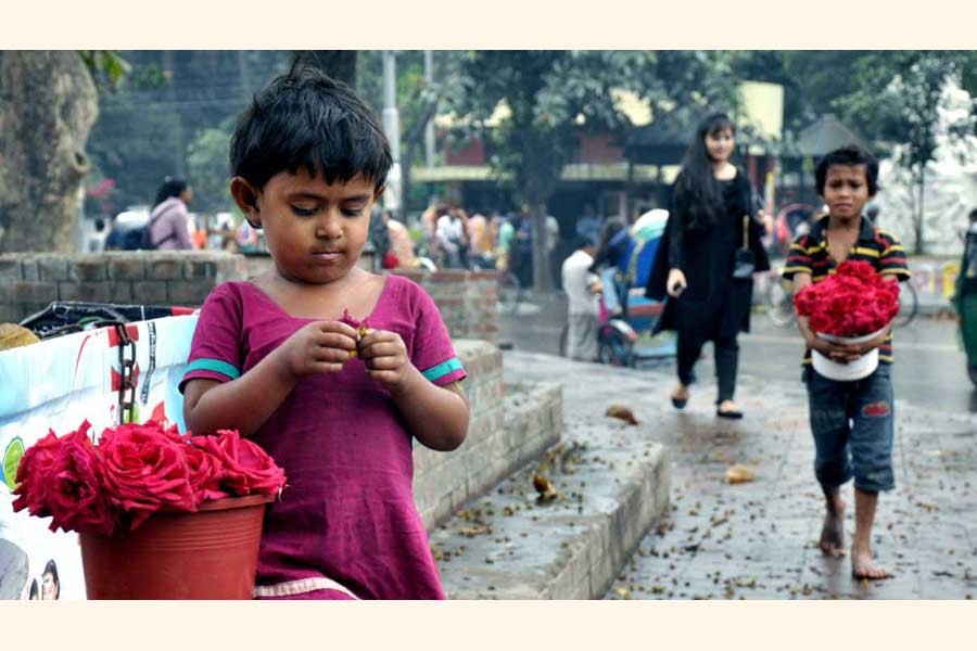 The plight of ragpickers and social indifference
