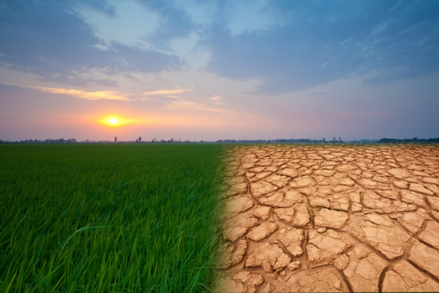 Climate change, economic growth and income inequality
