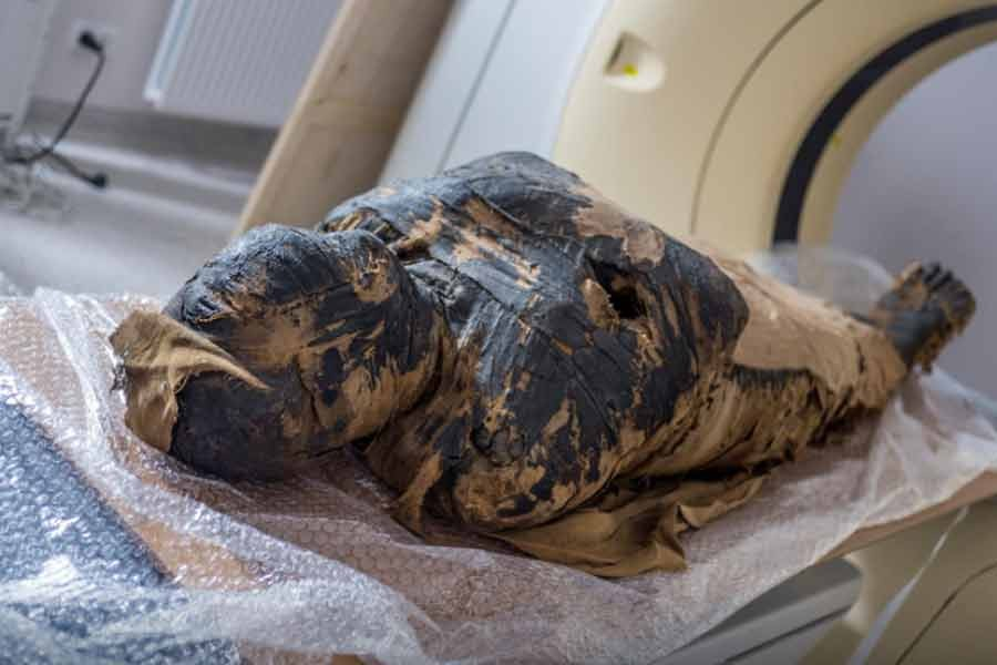 A pregnant Egyptian mummy is pictured during a research work in this undated handout photo -Reuters