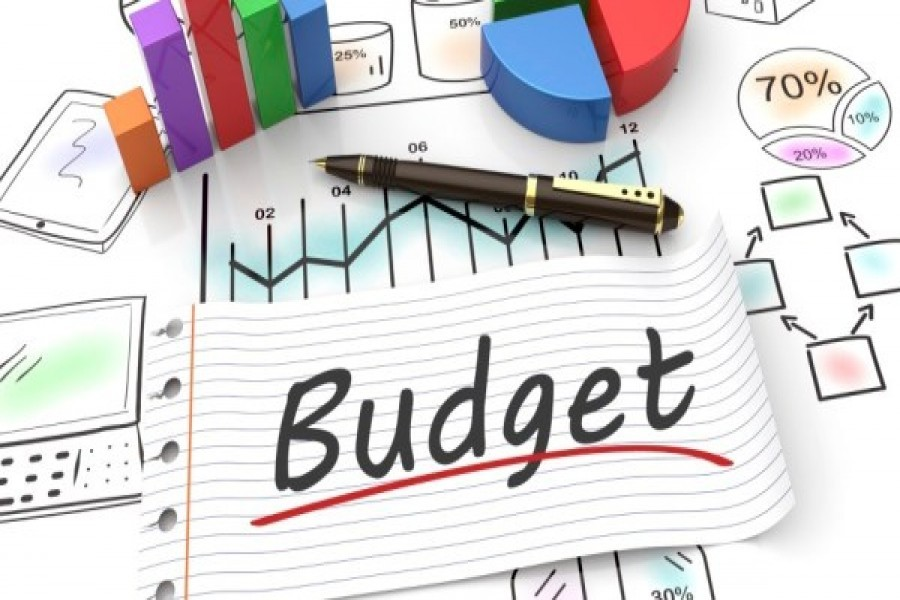 Macroeconomic stance, revenue mobilisation for FY22 budget