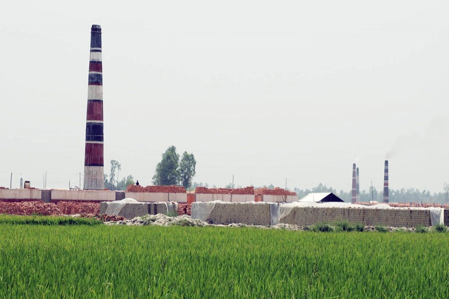 A view of a brick kiln in a crop field under Dhunat upazila of Bogura — FE Photo