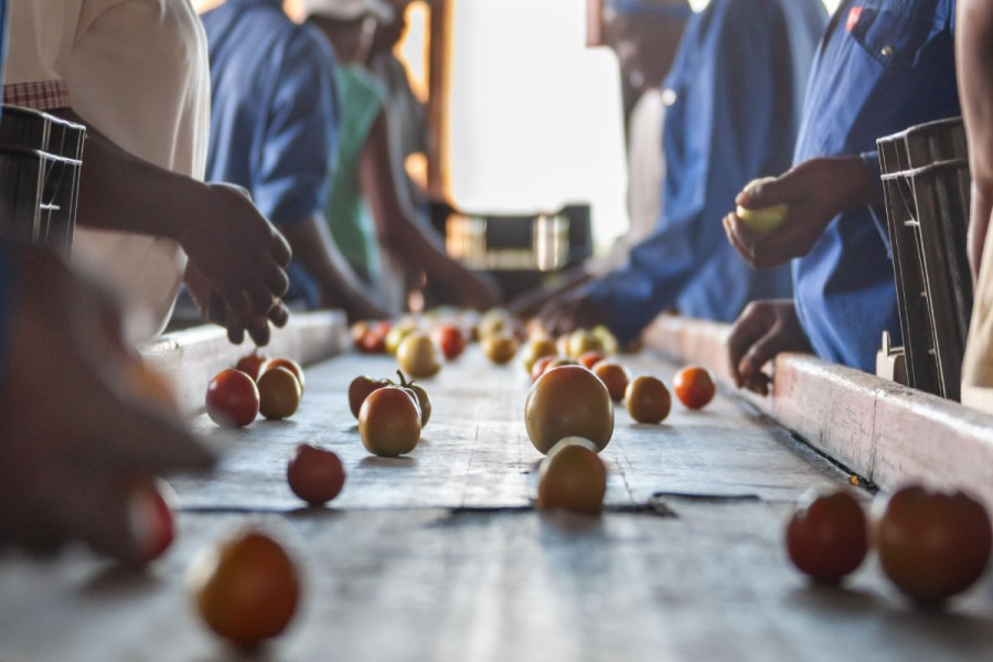 When delay in a trade agreement undermines food security