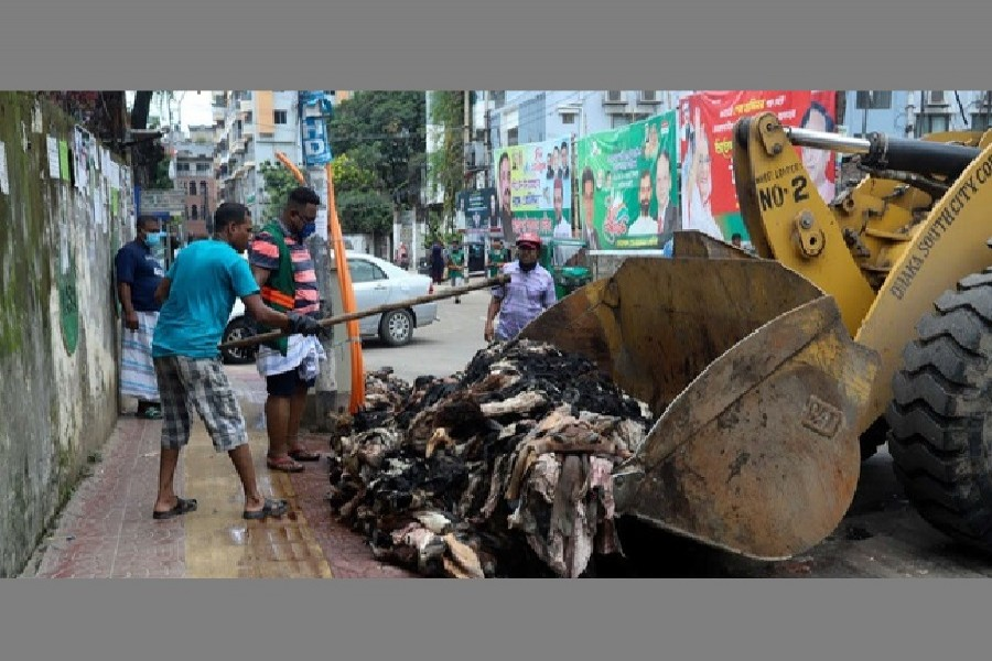 Traders leave unsold rawhide to rot in Dhaka