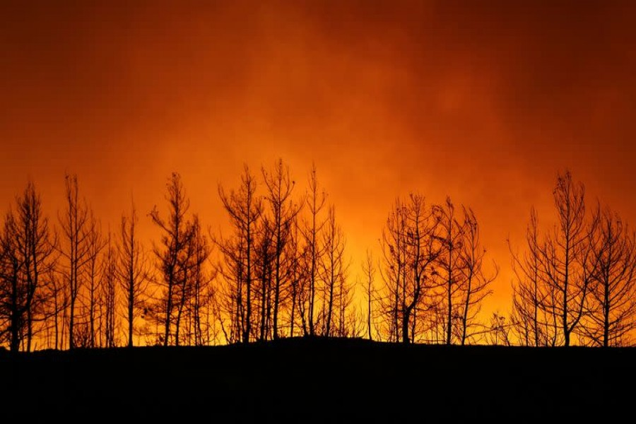 Four dead as wildfires sweep Turkey; villages and hotels evacuated
