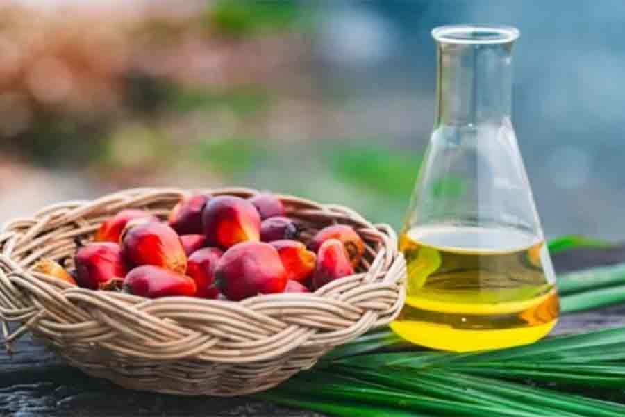 Edible oil consumption increases by 20pc in five years